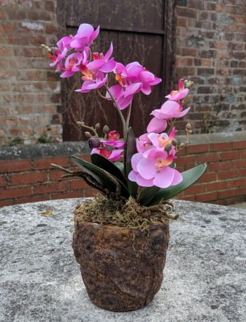 Artificial Orchid in Rust Effect Stoneware Pot